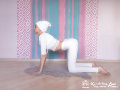 Переход из Позы Коровы в Позу Лежа 1. Упражнение Кундалини Йоги картинка